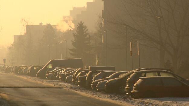Smogowi edukatorzy ruszą w miasto
