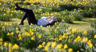 Rekordowo ciepła zima w Wielkiej Brytanii