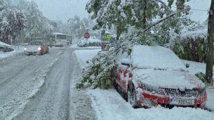 """Śnieżyce w Austrii. """"Mamy do czynienia ze średniej wielkości katastrofą"""""""