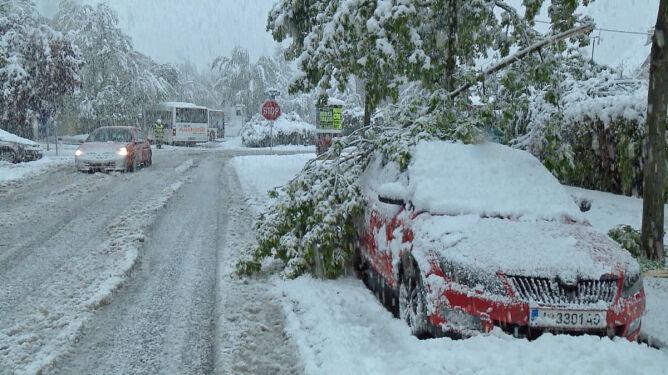 """Śnieżyce w Austrii. """"Mamy do czynienia <br />ze średniej wielkości katastrofą"""""""